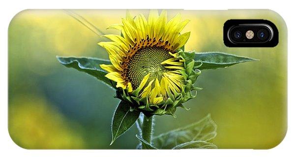 Shy Sunflower IPhone Case