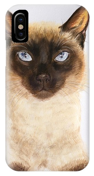 Siamese Cat Over White IPhone Case