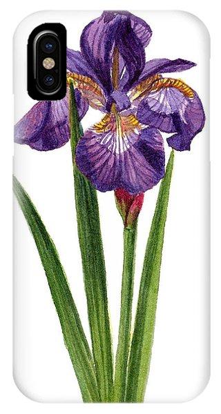 Siberian Iris II - Iris Sibirica IPhone Case