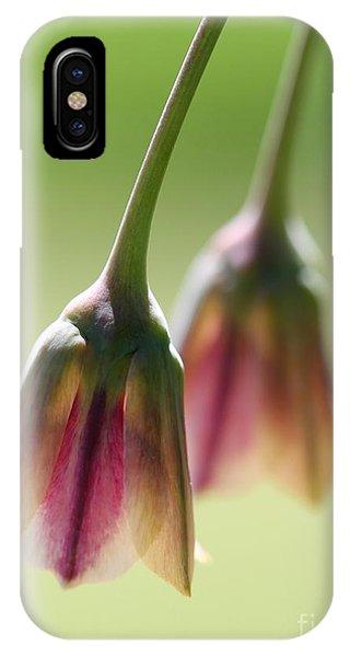 Sicilian Honey Garlic IPhone Case