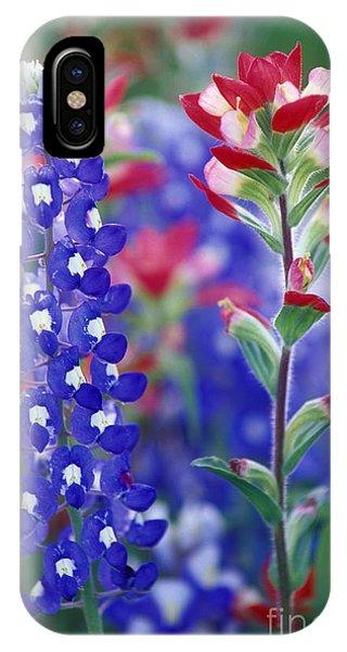Scarlet Paintbrush iPhone Case - Side By Side - Fs000925 by Daniel Dempster