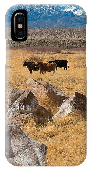 Sierra Cattle IPhone Case