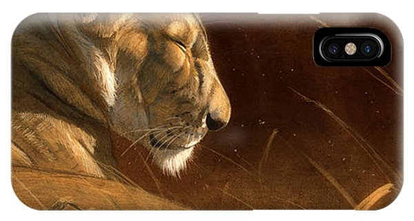 Lions iPhone Case - Siesta by Aaron Blaise