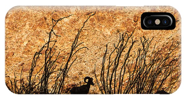 Silhouette Bighorn Sheep IPhone Case