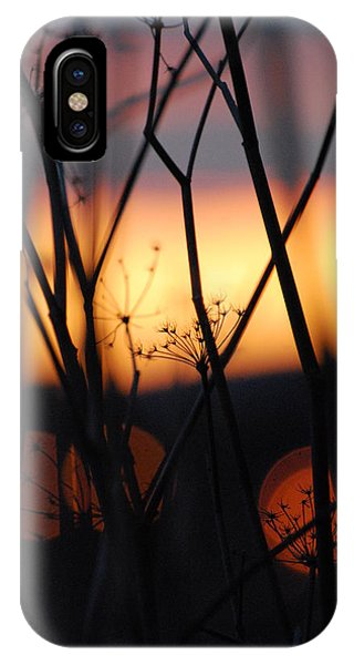 IPhone Case featuring the photograph Silhouette Of Old Queens by Jani Freimann