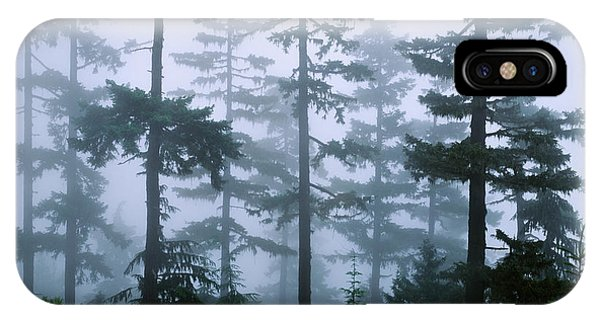 Silhouette Of Trees With Fog IPhone Case