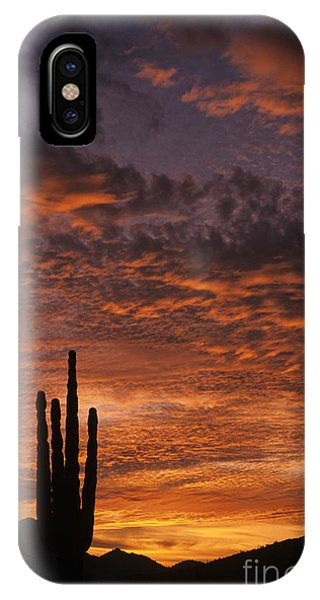 Silhouetted Saguaro Cactus Sunset At Dusk With Dramatic Clouds IPhone Case