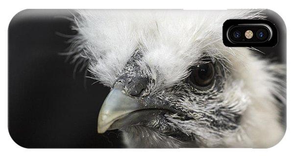 Silkie Chicken Portrait IPhone Case