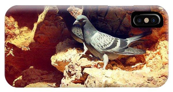 Silver Birds IPhone Case