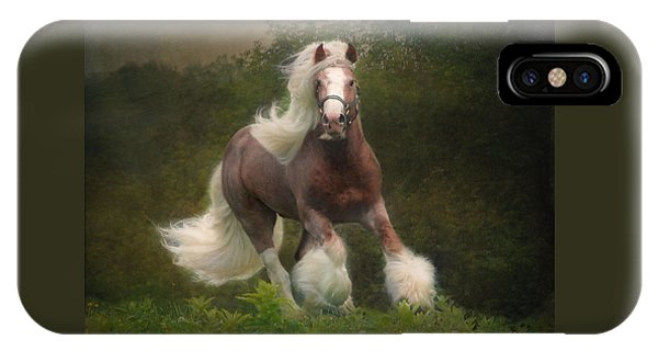 Equine iPhone Case - Simon And The Storm by Fran J Scott
