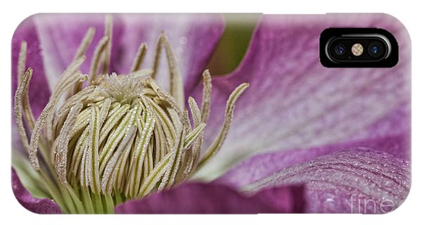 Simple Clematis IPhone Case