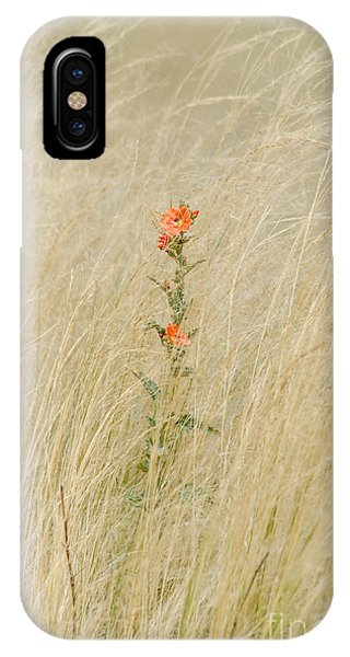 Simple Splash Of Color IPhone Case