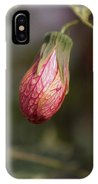 Single Bud IPhone Case