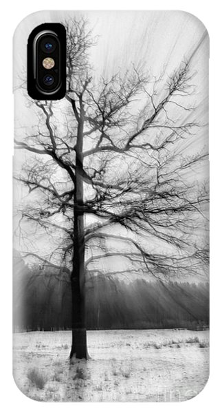Single Leafless Tree In Winter Forest IPhone Case