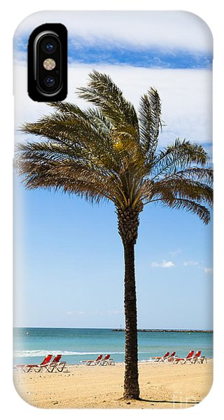 Single Palm Tree On Beach With Unoccupied Sun Loungers IPhone Case