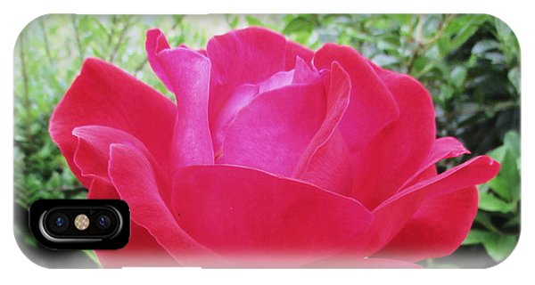 iPhone Case - Single Red Rose by Kathy Spall