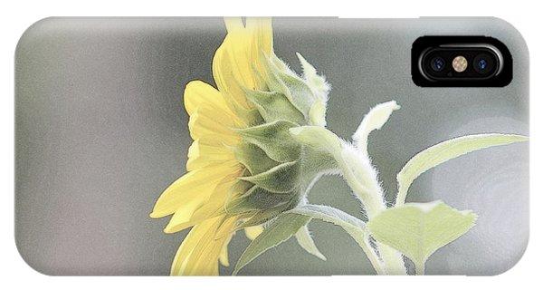 Single Sunflower IPhone Case