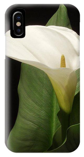 Single White Calla IPhone Case