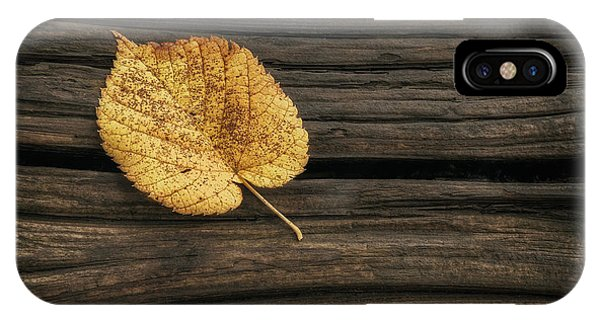 Amber iPhone Case - Single Yellow Birch Leaf by Scott Norris