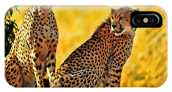 Sister Cheetahs IPhone Case