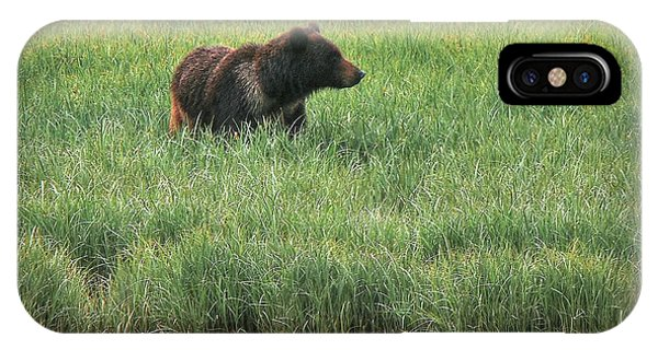 Sitka Grizzly IPhone Case