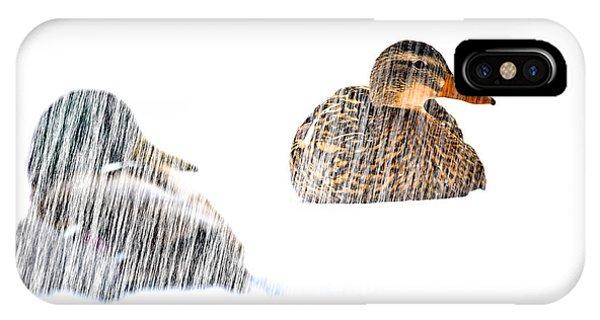 Mallard iPhone Case - Sitting Ducks In A Blizzard by Bob Orsillo