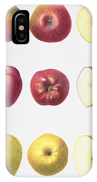 Organic Foods iPhone Case - Six Apples by Margaret Ann Eden