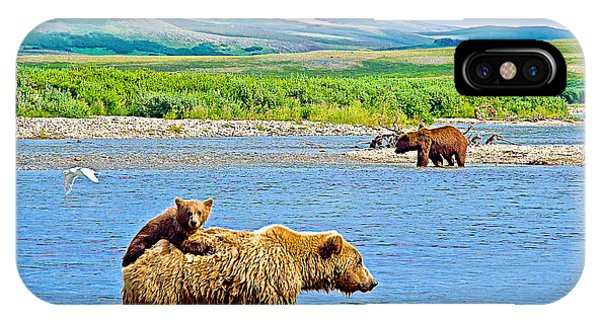 Six-month-old Cub Riding On Mom's Back To Cross Moraine River In Katmai National Preserve-alaska IPhone Case
