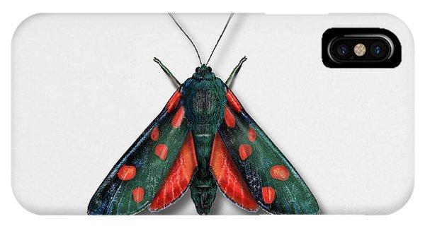 Six Spot Burnet Butterfly - Zygaena Filipendulae Naturalistic Painting - Nettersheim Eifel IPhone Case