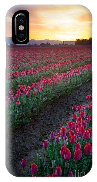 Agronomy iPhone Case - Skagit Valley Blazing Sunrise by Inge Johnsson