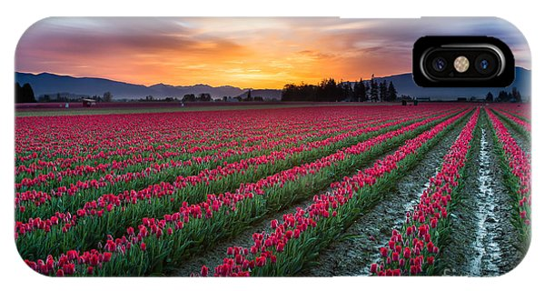Rural America iPhone Case - Skagit Valley Predawn by Inge Johnsson