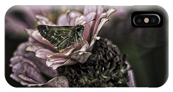 Skipper On Flower IPhone Case