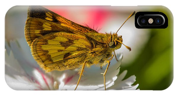 Skipper IPhone Case