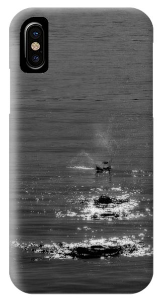 Skipping Stones IPhone Case