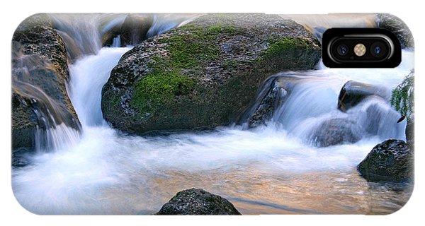 Skokomish River IPhone Case