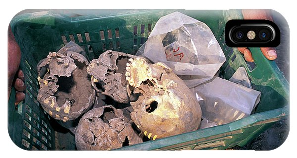 Skulls Excavated From Al-fustat Phone Case by Pascal Goetgheluck/science Photo Library