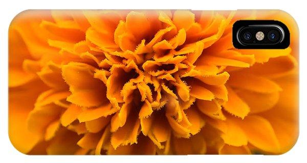 Skunk Flower Orange IPhone Case