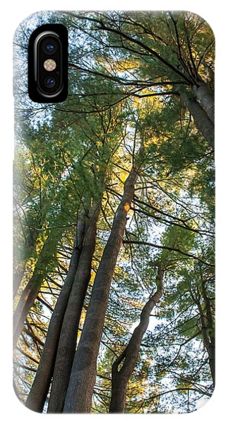 Skyward Trees IPhone Case