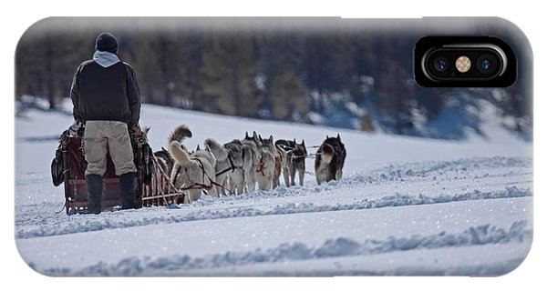 Sled Dog  IPhone Case