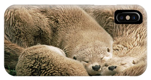 iPhone Case - Sleeping Otters by Duncan Shaw/science Photo Library
