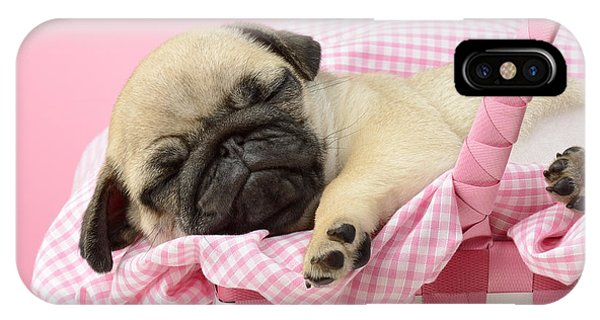 Pug iPhone X Case - Sleeping Pug In Pink Basket by MGL Meiklejohn Graphics Licensing
