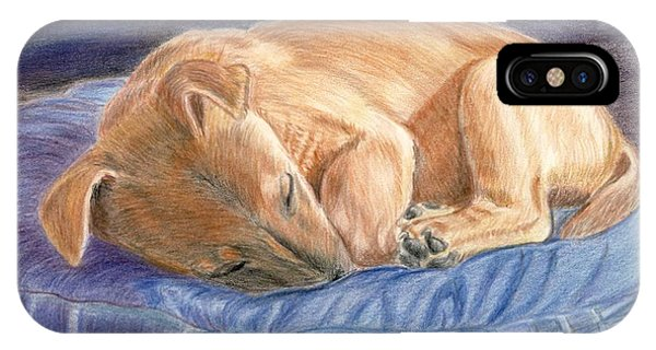 Sleeping Puppy IPhone Case