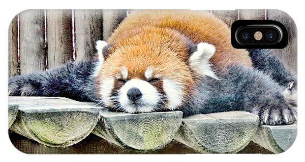 Sleeping Red Panda Bear IPhone Case