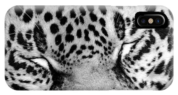 IPhone Case featuring the photograph Sleeping by Steven Santamour