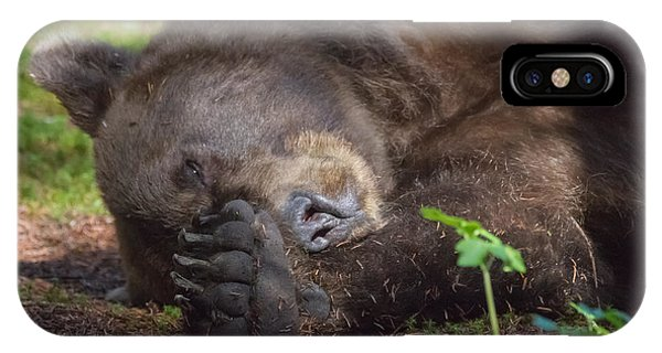 Sleepy Head IPhone Case