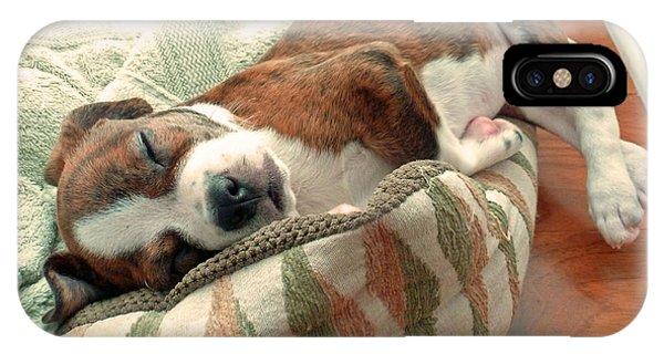 Sleepy Puppy IPhone Case