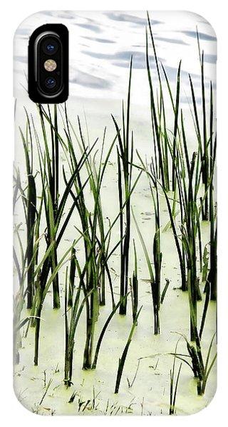Slender Reeds IPhone Case