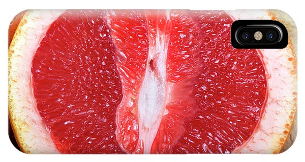 Grapefruit iPhone Case - Sliced Pink Grapefruit by Pascal Goetgheluck/science Photo Library