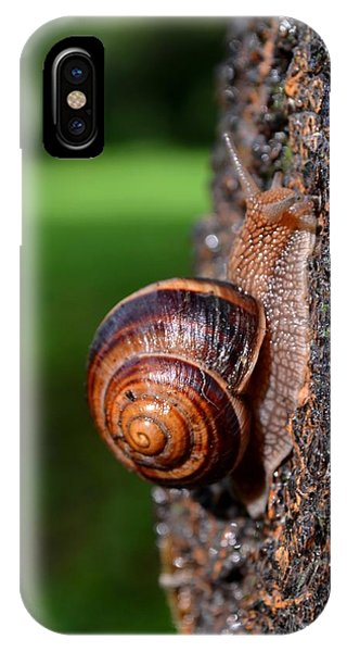 Slowly And Surely IPhone Case