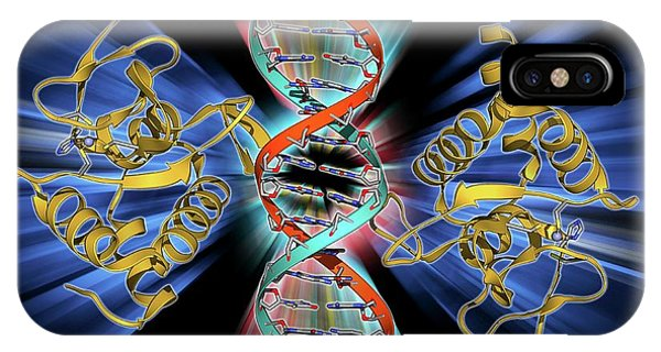 Smad4 Protein Domain Bound To Dna Phone Case by Laguna Design